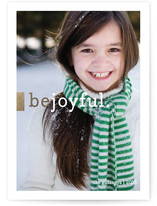 One of the new 2013 Holiday cards from minted.com
